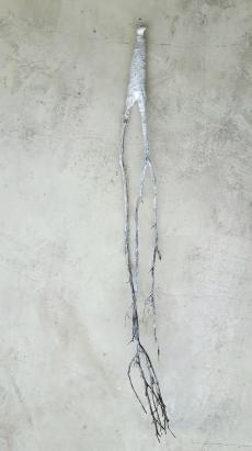 Âme-oiseau no 3 (2017) (50 x 6 x 6 cm)