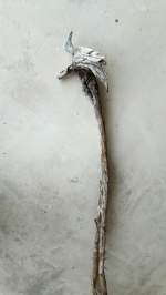 Âme-oiseau no 8 (2017) (50 x 15 x 8 cm)